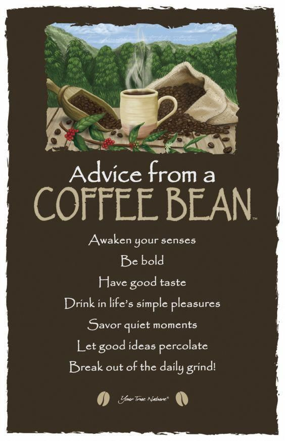 Advice From A Coffee Bean Coffeebean Coffee Humor Coffee Beans Coffee Quotes