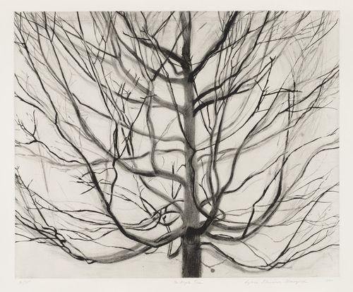 Sylvia Plimack Mangold. The Maple Tree. 1990