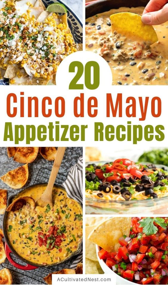 20 Cinco de Mayo Appetizer Recipes- A Cultivated Nest