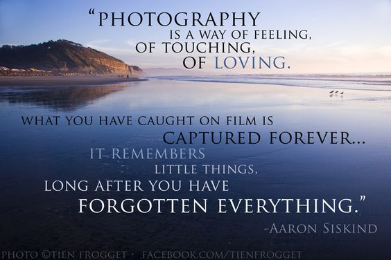 Inspirational Photography Quotes Amazing Aaron Siskind Quote  The Photography Network  Picturesocial