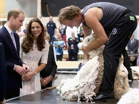 Prince William was particularly interested in the sheep shearing. Picture: Getty Images