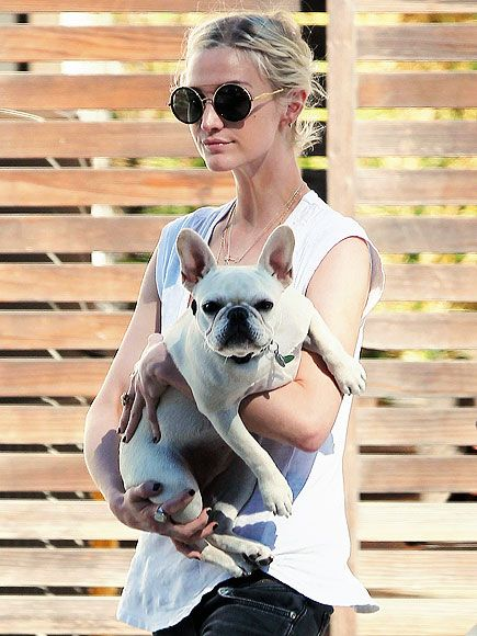 Ashlee Simpson And Her French Bulldog Puppy Alabama Ashlee