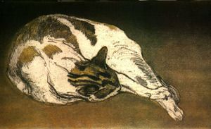 Theophile Alexandre Steinlen (1859 - 1923) - chat dormant (sleeping cat)