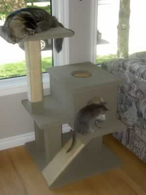 Customer Trees - Cat Tree Plans - How to Build Cat Furniture - Do-it Yourself - Make A Cat House - DIYS Cat Condo Plan
