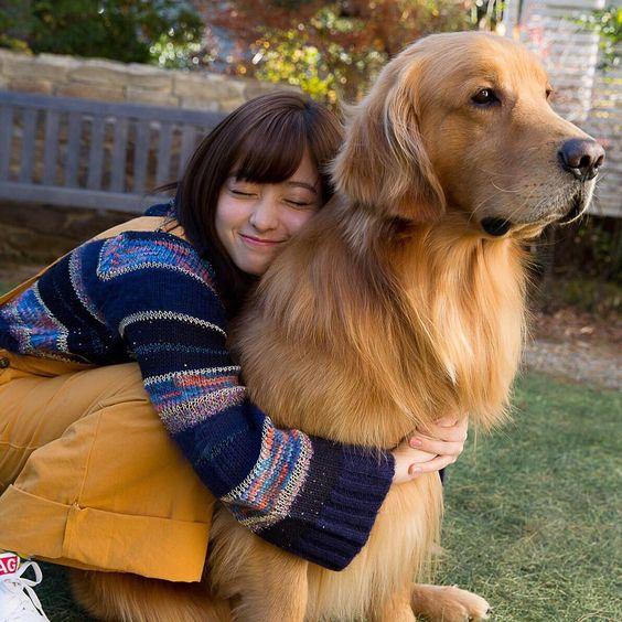 犬に抱きつく橋本環奈