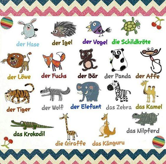 deutsch tier aprendiendo alem225n pinterest deutsch