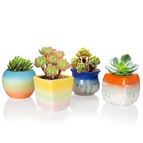 Solofish Succulent Plant Pot Set Of 4 Cute Rainbow Ceramic Pot Indoor Decorative Pots Make Such An Unu Cactus Plant Pots Garden Plant Pots Flower Pot Garden
