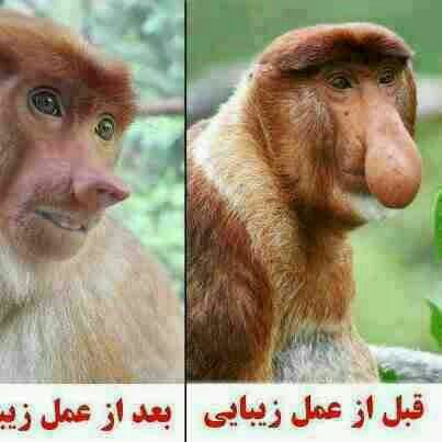 Before....after
