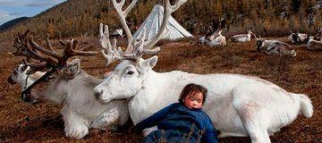 Aunque parezca una antigua leyenda, este es el día a día del Pueblo Reno en el norte de Mongolia.