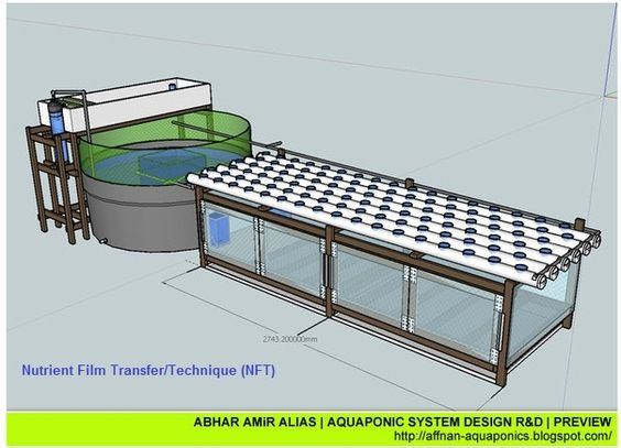Aquaponics Designs Aquaponics Fish Pinterest Aquaponics System Design And Layout