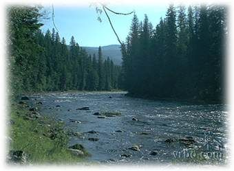 Libby, Montana. Beautiful streams and forests around this area in the northern Rocky Mountains.