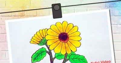 20 Gambar Bunga Kamboja Yang Mudah Digambar Cara Mudah Menggambar Bunga Matahari Download Grafting Gambar Bunga Menggambar Bunga Menggambar Bunga Matahari