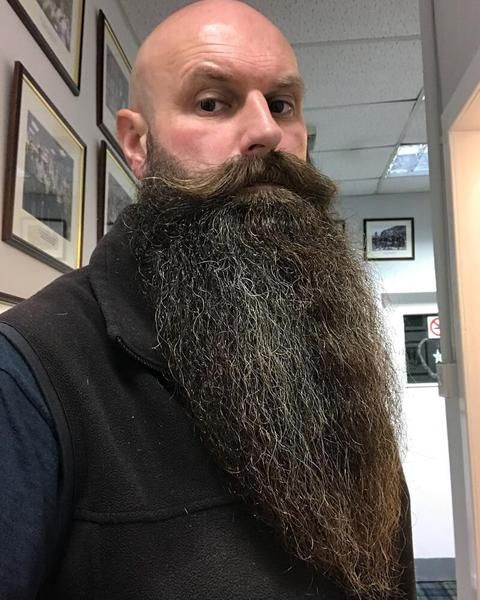 Surprising The 100 Best Beards Of 2017 Rg100Beards Long Beards Great Schematic Wiring Diagrams Amerangerunnerswayorg