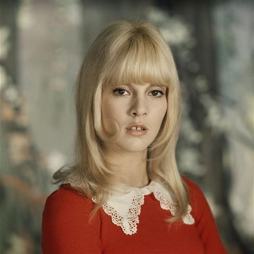 Sylvie Vartan. Mod style Red velvet and cream peter pan lace collar