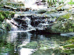 Zuleyka De León Fotografía   nature