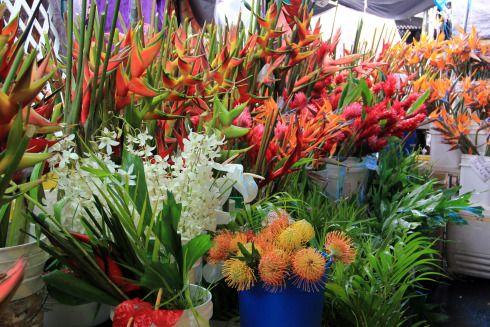 Kona Hawaii Flower Market Places To Remember Pinterest And Island