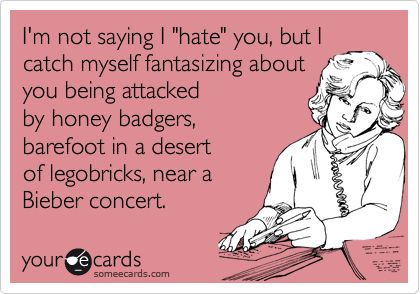 Pretty much: I Hate You, Don T Hate, E Card, Funny Stuff, Honey Badger, Honeybadger, Lego Brick