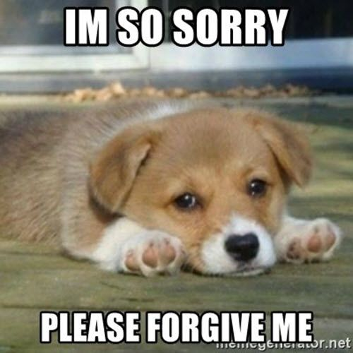 40 Adorable I M Sorry Memes People Won T Be Able To Resist Sayingimages Com Sorry Memes I Miss You Meme Puppy Meme