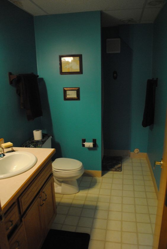 Teal bathrooms kid and brown on pinterest - Bathroom color schemes brown and teal ...