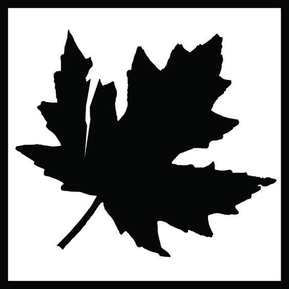 The TORN LEAF logo Please visie at: http://tornleaf.org/