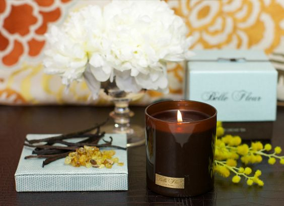 Mimosa Magnifica is not only exotic and intoxicating, its a floral oriental that defies classification and takes the notion of contrasting raw materials to a higher dimension.