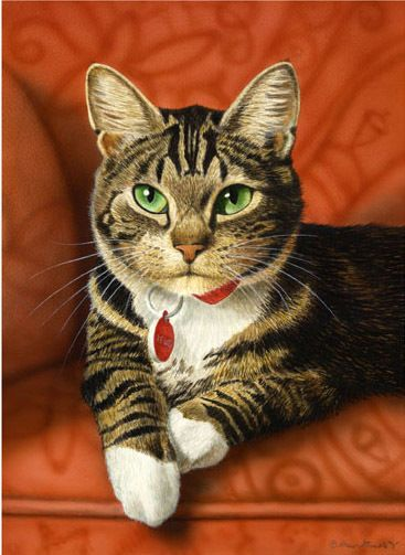 LEWIS TABBY CAT ART FRAMED LTD ED PRINT BY CATMANDREW: