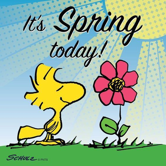 It's Spring Today