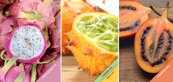 Você já ouviu falar em Pitaia, Kino e Tamarillo? São frutas exóticas que possuem cores cítricas e podem inspirar a decoração da sua casa. Conte pra gente as cores das frutas que te inspiram!