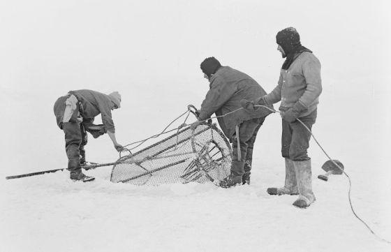 Hallado en la vieja base del capitán Scott el cuaderno del naturalista y fotógrafo George Murray Levick, miembro de la expedición de 1910 al polo sur