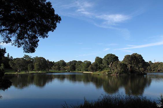Centennial Park, Sydney, New South Wales, Australia.