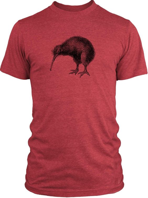 Big Texas Kiwi Illustration (Black) Vintage Tri-Blend T-Shirt