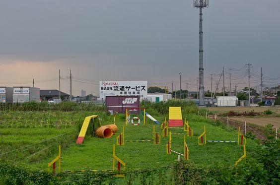山 ヲ 煮 ル : Photo