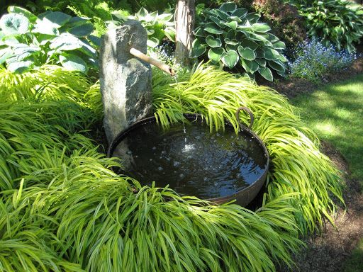 Gardens water features and forests on pinterest for Japanese water plants