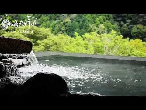 箱根・宮ノ下温泉 箱根吟遊は、箱根連山を一望する渓谷に建つ、絶景の全室露天風呂付き客室の宿です。老舗旅館の和のおもてなしとバリの様式美が融合したラグジュアリーリゾート。厳選した旬の素材を使った懐石料理、大地の恵みの温泉と絶景、箱根の杜で五感を解き放つエステを体感してください。