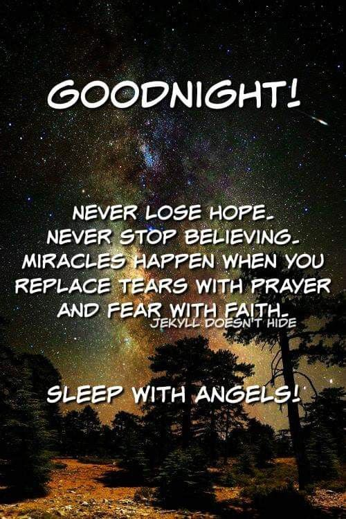 Pin By Berdie Creech On Holiday Greetings Memes Good Night Quotes Never Lose Hope Night Quotes