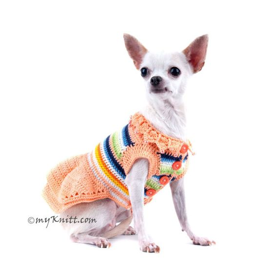Summer Dog Dress in delicate peach color stripes with any other colorful color. Adorned with a beautiful handmade crocheted collar lace and pearls. This dress perfects for afternoon tea parties. Its a piece of art from Myknitt Dog Designer Clothes. Any personalized dog clothes are welcome.