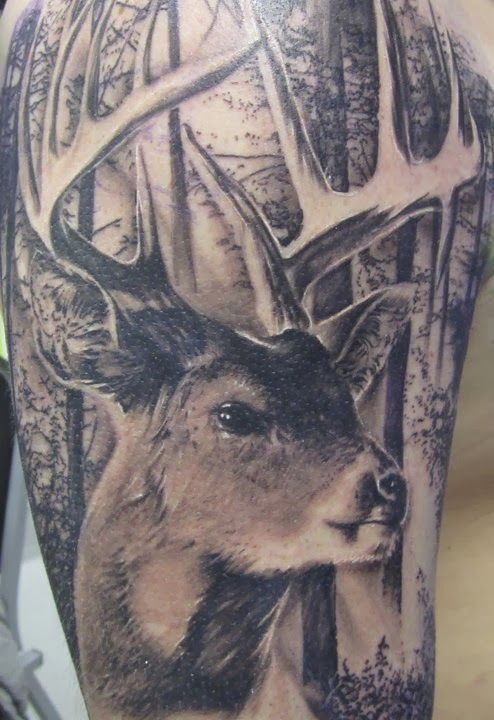 #Tattoos #Tattoo #deertattoos Deer Tattoos