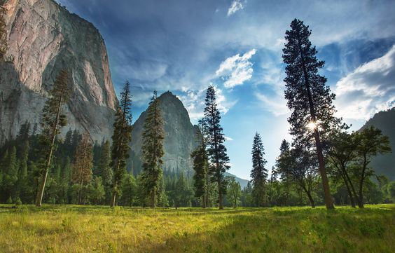 Yosemite National Park - looks like a dream I had years ago