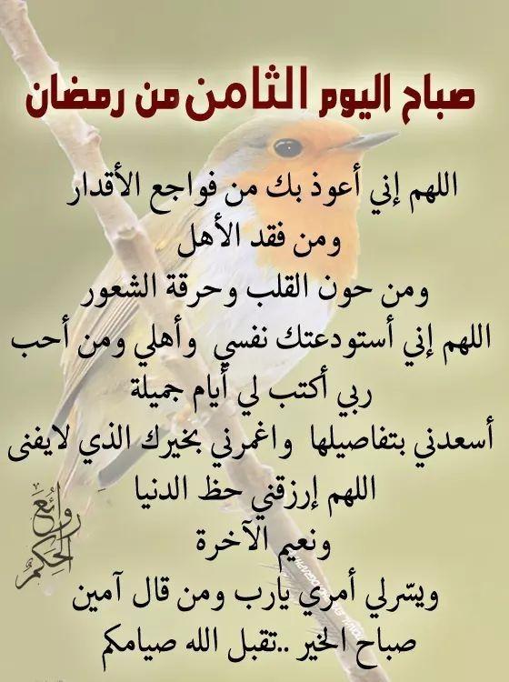Pin By فلسطينية ولي الفخر On هل هلالك يا شهر الخير Islamic Inspirational Quotes Ramadan Inspirational Quotes