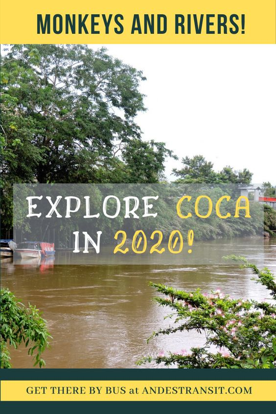 Coca: The Gate to the Amazon in 2020 (Pinterest)