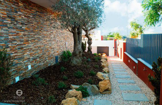 Jardim com arranjos exteriores  Moradias modernas  Pinterest