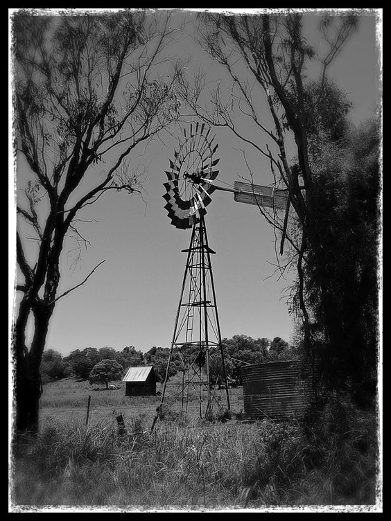Windmill & water tank, Australia. From The Serenity Space blog.