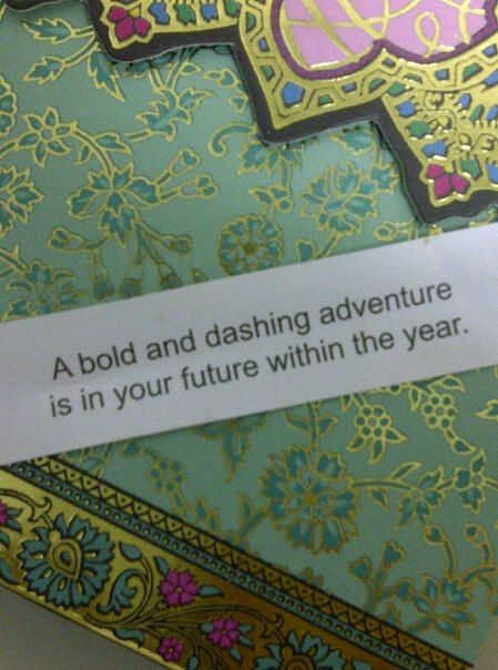 A bold and dashing adventure is in your future within the year.: Bold, Future, Wisdom, Inspirational Quotes, Year, Dashing Adventure