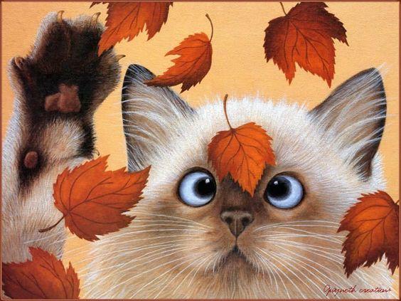Cat in Fall