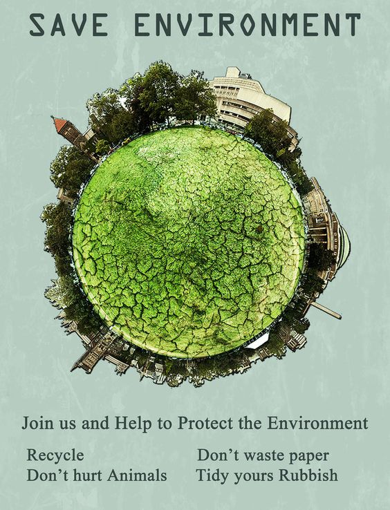 ways to protect the environment essay There are several ways that you – yes, you- can help protect this planet we call  earth  calculate your environmental footprint to see how much impact just one .