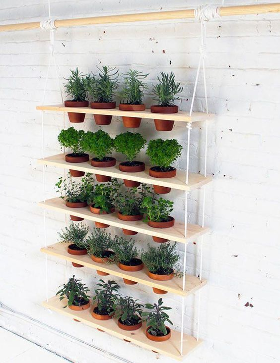 Hanging Herb Garden  | How To Grow Your Herbs Indoor  - Gardening Tips and Ideas by Pioneer Settler at http://pioneersettler.com/indoor-herb-garden-ideas/: