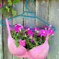 Bra hanging basket!: Bra Planter, Gardening Idea, Breast Cancer, Flower Pot, Cancer Awarenes, Flowerpot