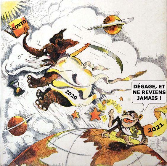 Bonne année 2021 #imagedrole #humour #memes #drole #2021