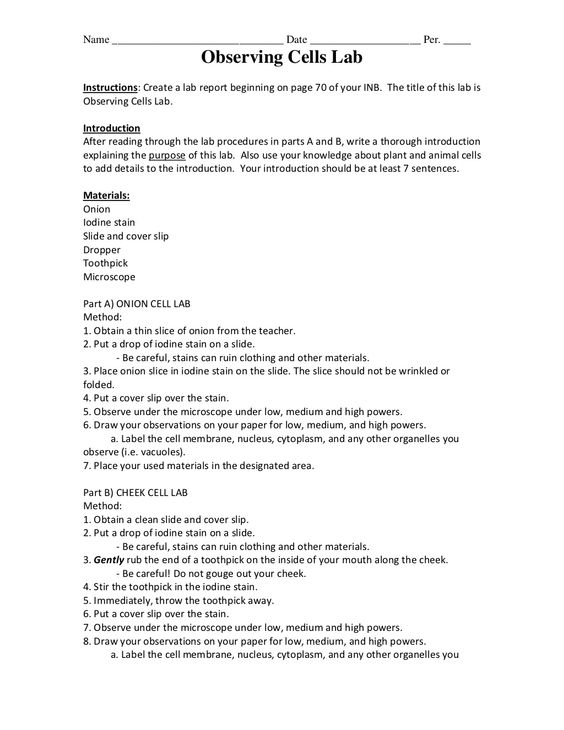 Onion And Cheek Cell Lab Biology Labs Lab Report Lab Report Template