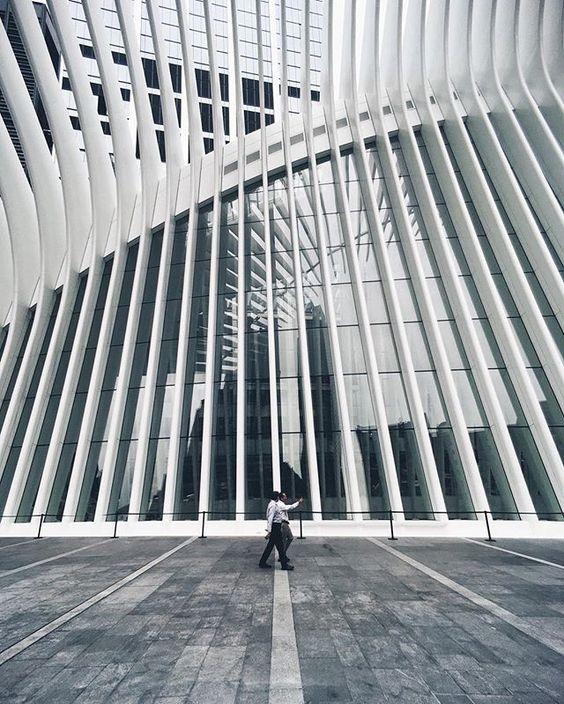 . . Big Bone / S. Calatrava 3 . . #Rio_Usa_Around / NYC . ::